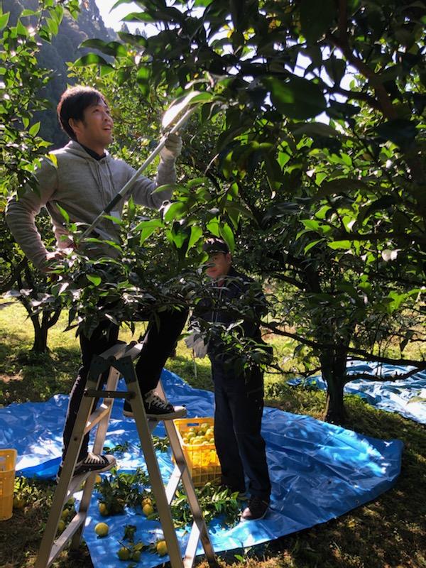 【CSR】原料収穫支援(より良い製品づくり事業を通して)